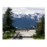 Olympic National Park Travel Photo Postcard