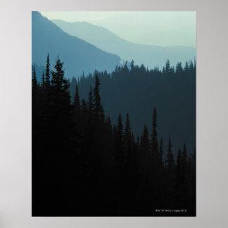 Olympic National Park , Washington Poster