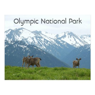 Valentines Themed Olympic National Park Wildlife Travel Postcard