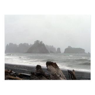 Olympic Peninsula Sea Stacks Postcard