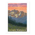 Olympic Peninsula, WashingtonSpring Flowers Post Card