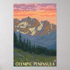 Olympic Peninsula, WashingtonSpring Flowers Poster