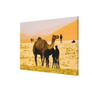 Omán, desierto de Khali del Al de la frotación, ca Lienzo Envuelto Para Galerías
