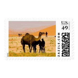 Omán, desierto de Khali del Al de la frotación, Sello