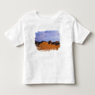 Oman, Dhofar Region, Salalah. Al, Baleed Shirt