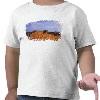 Omán, región de Dhofar, Salalah. Al, Baleed Camisetas