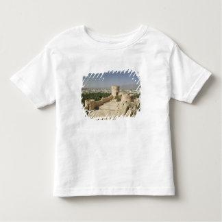Oman, The Batinah Plain, Nakhal. Nakhal Fort, at Shirt
