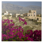 Oman, Western Hajar Mountains, Al Hamra. Town Large Square Tile