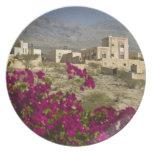 Oman, Western Hajar Mountains, Al Hamra. Town Plates