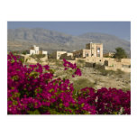 Oman, Western Hajar Mountains, Al Hamra. Town Postcard