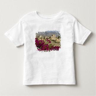 Oman, Western Hajar Mountains, Al Hamra. Town Shirt