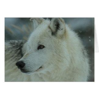 Omega Wolf Card