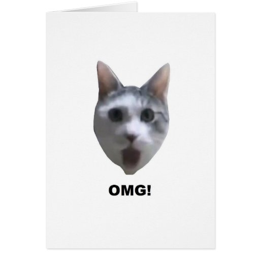 OMG CAT! (what has he seen?) Greeting Card