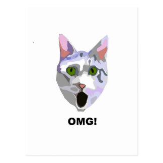OMG! CAT 'what has he seen?' Postcard