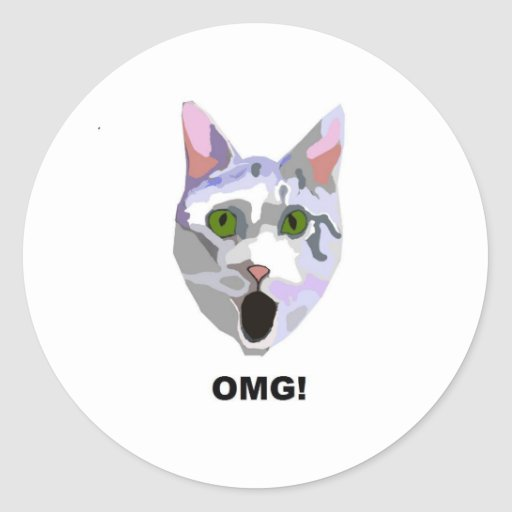 OMG! CAT 'what has he seen?' Round Stickers