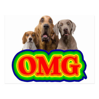 OMG Rainbow with surprised dogs! Postcard