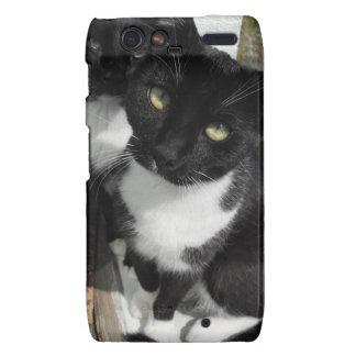 Ominous Cats Motorola Droid RAZR Cover