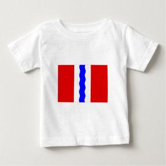 Omsk Oblast Flag Tshirt