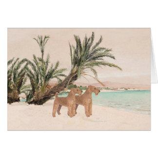 On a Palmy Seashore Card