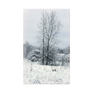 On A Winter's Day Gallery Wrapped Canvas