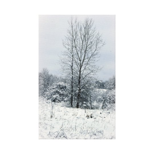 On A Winter's Day Canvas Print