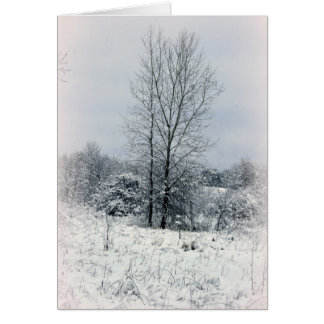 On A Winter's Day Card
