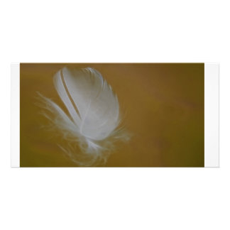 On A Wisp of a feather Photo Card