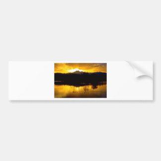 On Golden Ponds Bumper Sticker