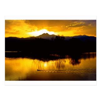 On Golden Ponds Postcard