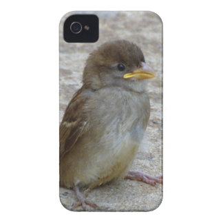 On My Own Case-Mate iPhone 4 Case