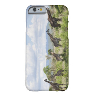 On safari in Mikumi National Park in Tanzania, 2 Barely There iPhone 6 Case