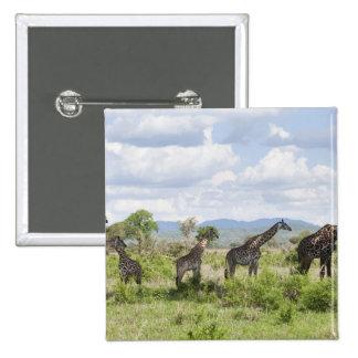 On safari in Mikumi National Park in Tanzania, 2 Button