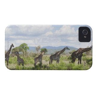 On safari in Mikumi National Park in Tanzania, 2 Case-Mate iPhone 4 Case