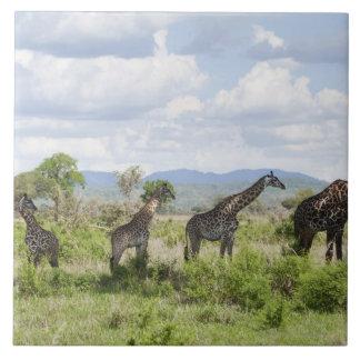 On safari in Mikumi National Park in Tanzania, 2 Ceramic Tile