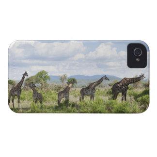 On safari in Mikumi National Park in Tanzania, 2 iPhone 4 Case