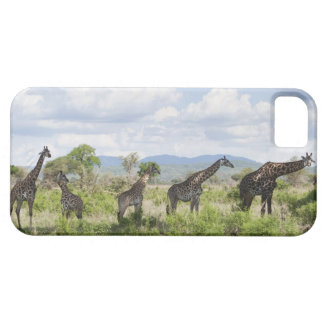 On safari in Mikumi National Park in Tanzania, 2 iPhone SE/5/5s Case