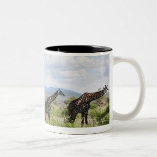 On safari in Mikumi National Park in Tanzania, 2 Two-Tone Coffee Mug