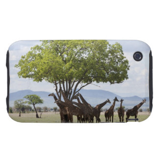 On safari in Mikumi National Park in Tanzania iPhone 3 Tough Cover
