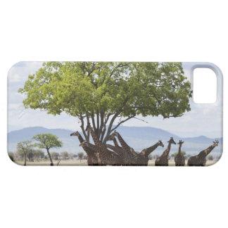 On safari in Mikumi National Park in Tanzania, iPhone SE/5/5s Case