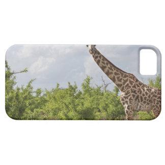 On safari in Tanzania, Africa. 2 iPhone SE/5/5s Case