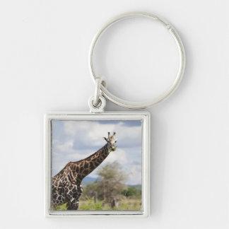 On safari in Tanzania, Africa. Keychain