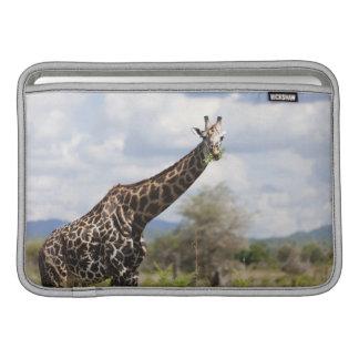 On safari in Tanzania, Africa MacBook Sleeves