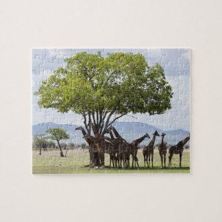 On Safari | Mikumi National Park, Tanzania Jigsaw Puzzle
