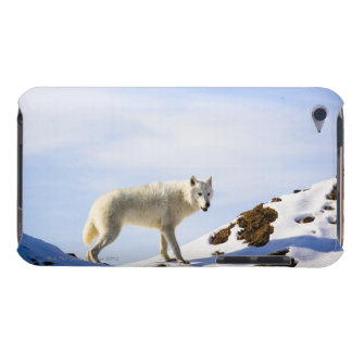 on snow covered terrain Case-Mate iPod touch case