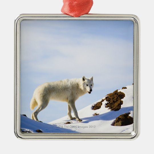 on snow covered terrain metal ornament