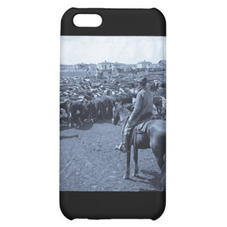 On Texas Plains Beneath the Skies of Blue Cover For iPhone 5C