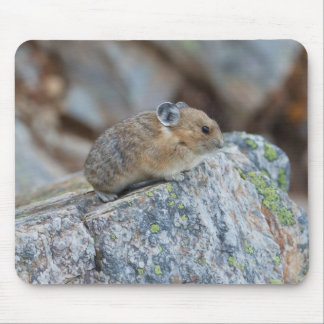 On The Alert Mouse Pad