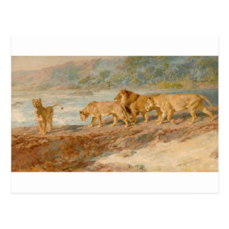 On the Bank of an African River by Briton Riviere Postcard
