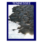 On The Banks Of the Tennessee River Post Card