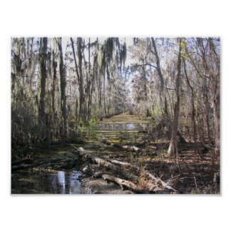 On the Bayou Poster